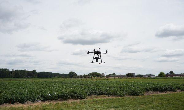 Drone boven aardappelveld