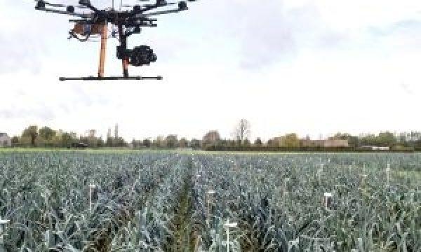 Drone boven preiveld