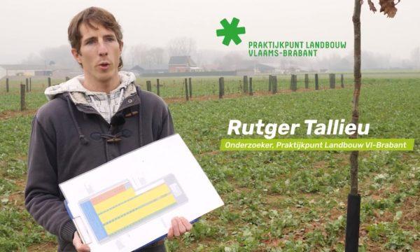Toelichting aanplant demoperceel Praktijkpunt Landbouw VB Herent