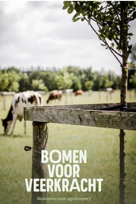 Brochure Bomen voor veerkracht
