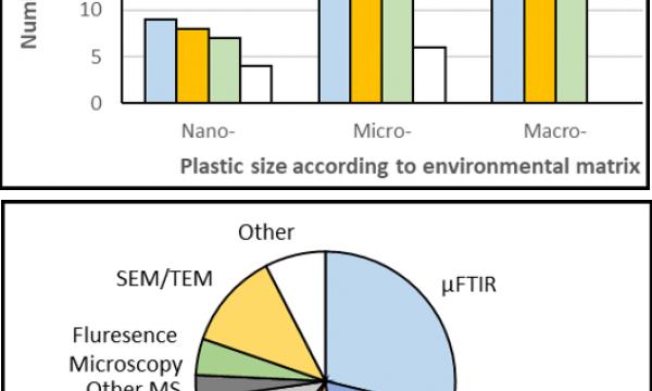 Différences analytiques et techniques pour les nano- et microplastiques