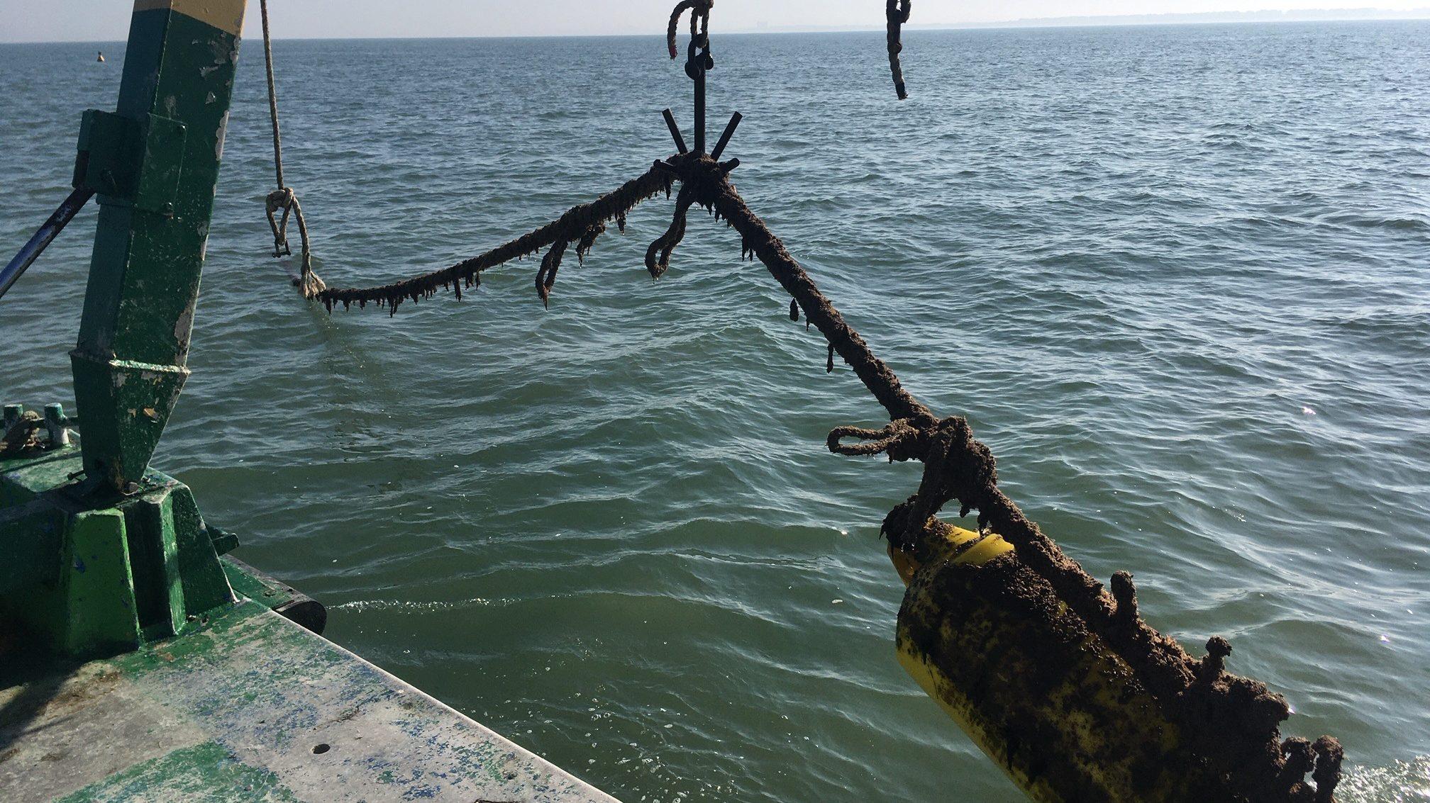Dropper lines Coastbusters2.0