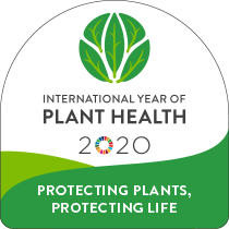 International Year of Plant Health