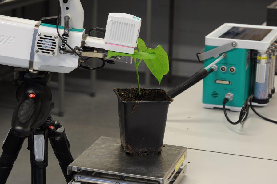 Photosynthesis measurements