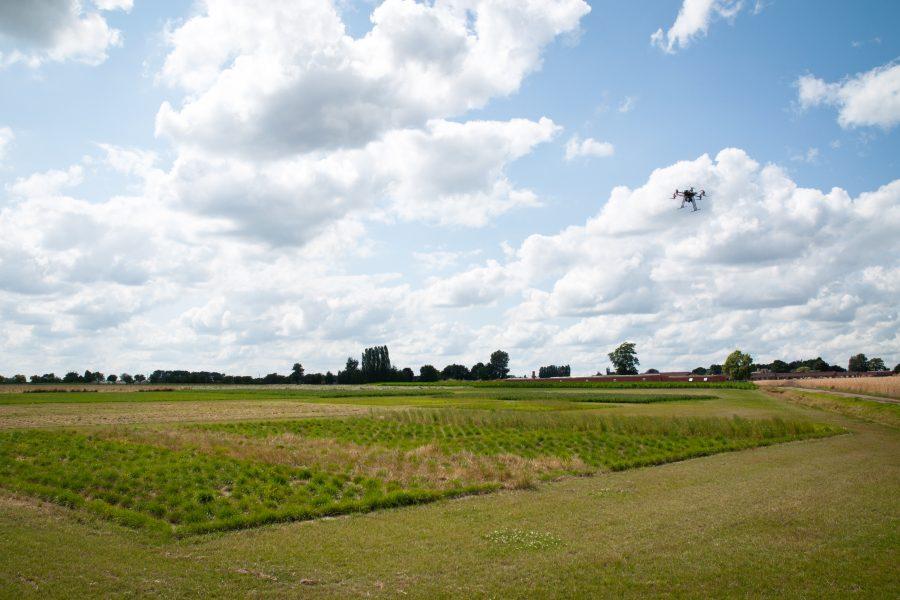 Drone boven proefvelden