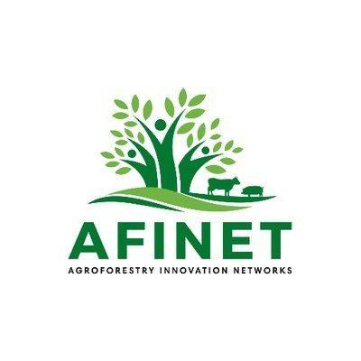 Logo AFINET project