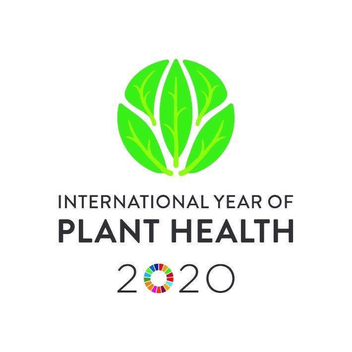Logo international year of plant health 2020