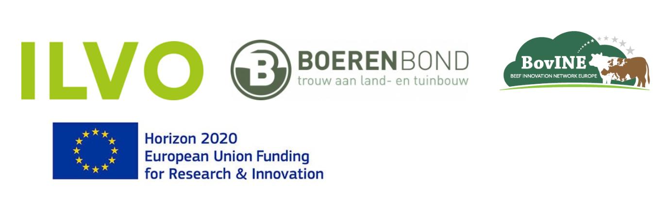 Logo BovINE en partners