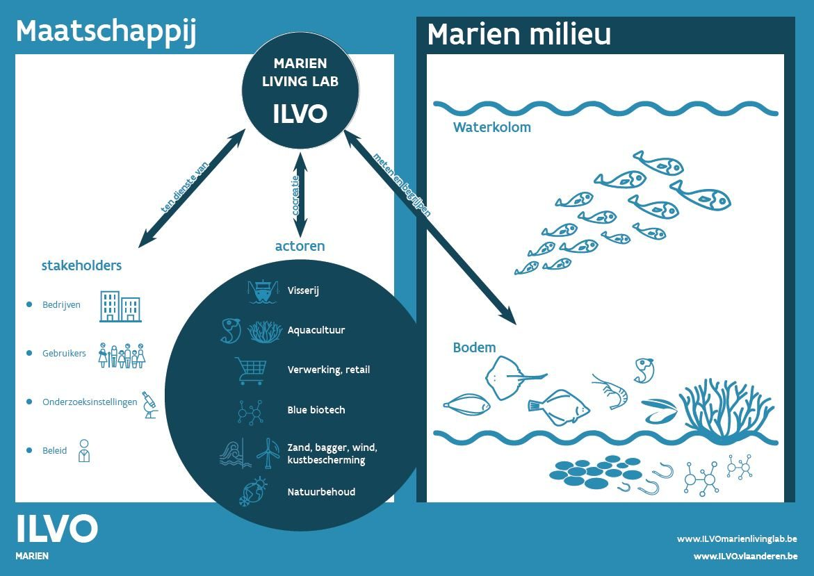 Marien Living Lab sectoren