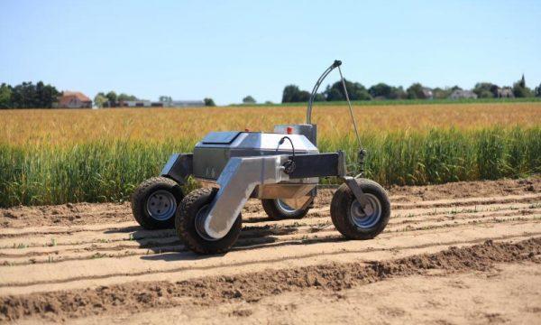 CSA robot