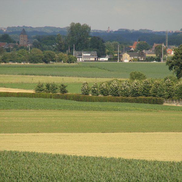 Landbouwlandschap