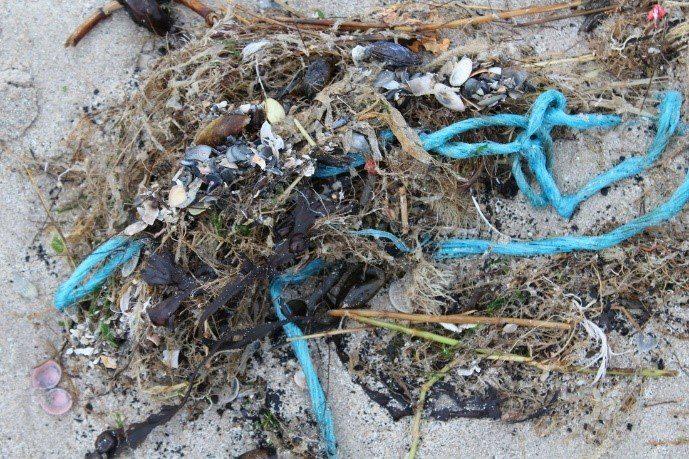 Plastic vervuiling op Belgisch strand