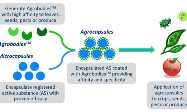 Application of agrocapsules
