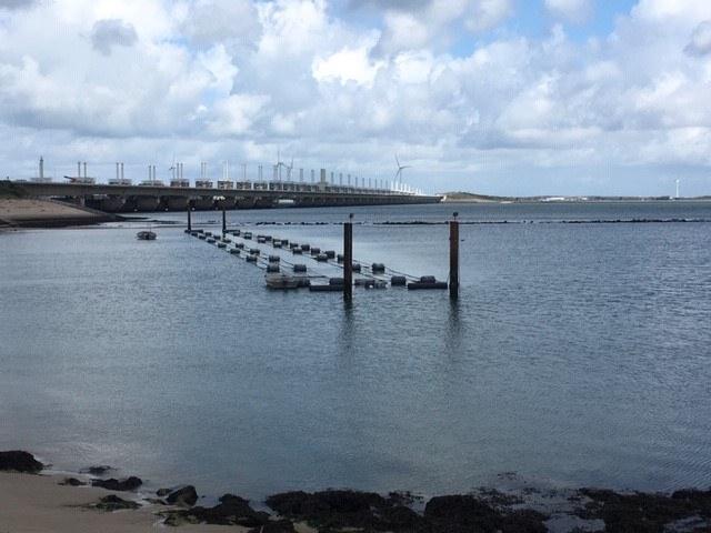 Zeewaar's seaweed farm