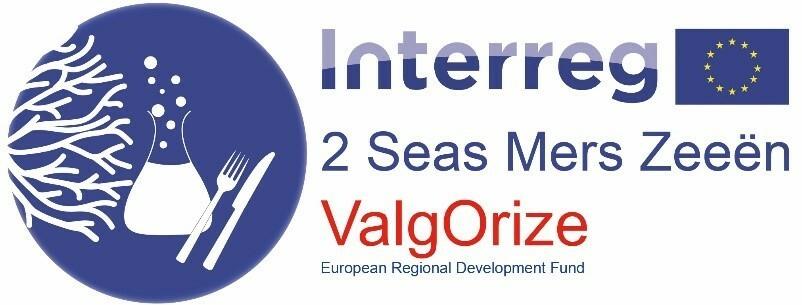Logo Interreg-2 zeeën project ValgOrize