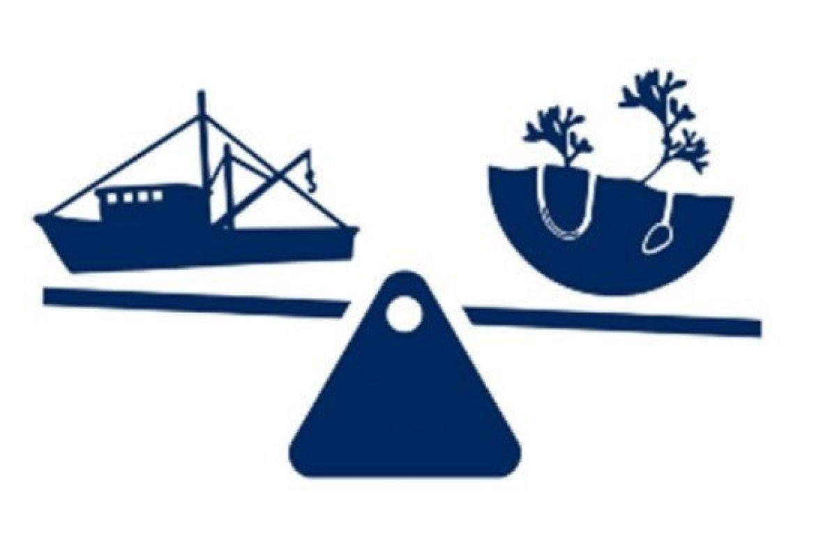 grafische weergave van de balans tussen bodemimpact en visserij: een vaartuig en een stukje bodem met bodemdieren op een weegschaal