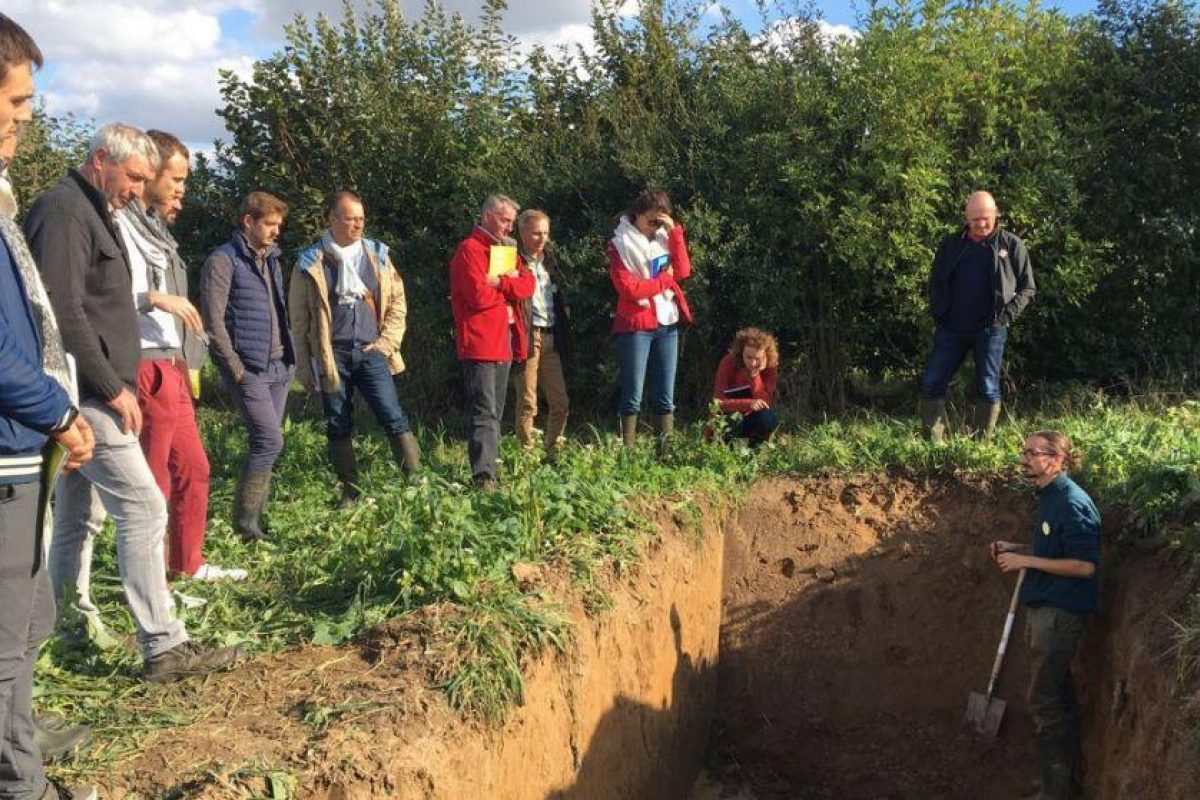 A group of people looking at a trench with a person in the trench, explaining the soil properties
