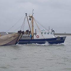 Schip voor de garnaalvisserij
