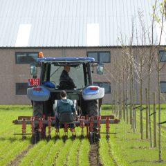 Een tractor op een veld met een bomenrij ernaast, dit is een vorm van agroforestry nl. alley croping.