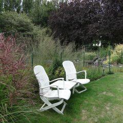tuin met gazon en sierplanten