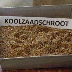 koolzaadschroot in een bak, met label