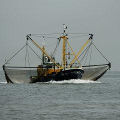 Vissersboot met twee sleepnetten