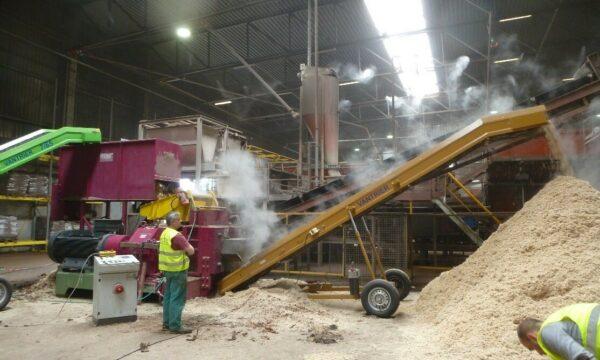 Loods met machines voor extrusie met een transportband voor de productie van houtsnippers