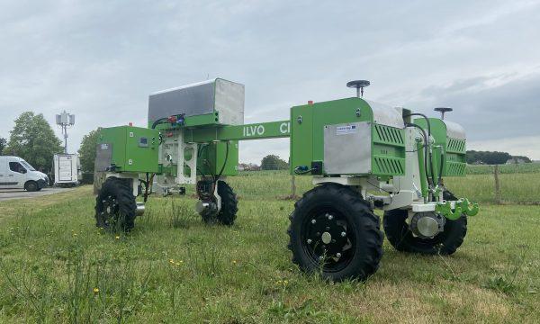 Foto robot in veld
