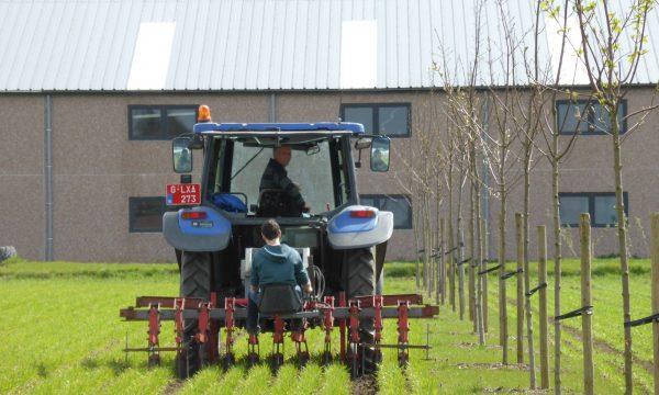 Tractor op grasakker met 2 boeren naast een rij jonge bomen