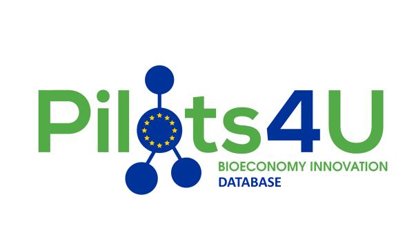 logo pilots4u