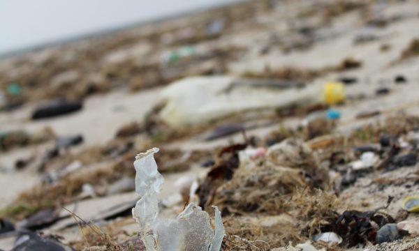 Zwerfvuil op het strand, een kapot pet-flesje