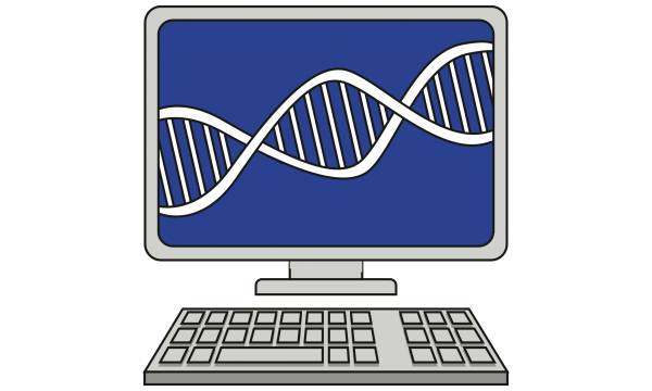 DNA in a computer screen