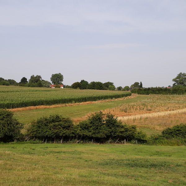greppel berm heuvelland