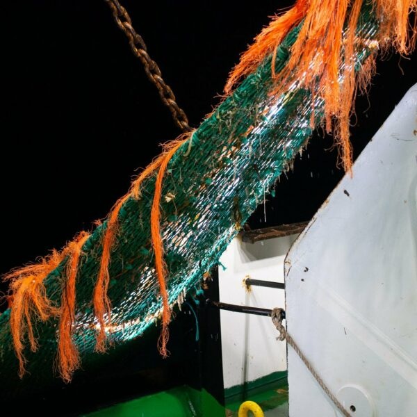 commercial fishing net at night