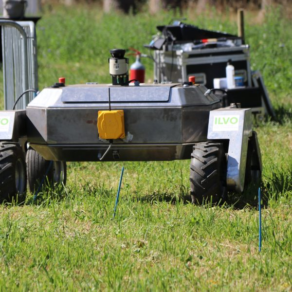 Robot on field of grass