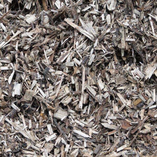 compost close-up