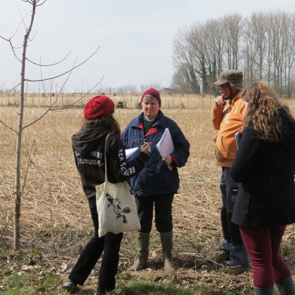 People talking next to a to a sapling in a field