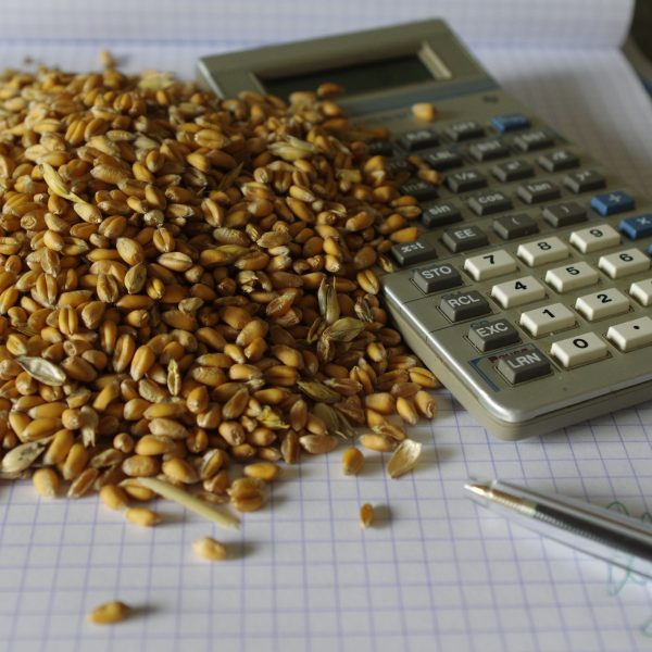 Calculator next to pile of grains