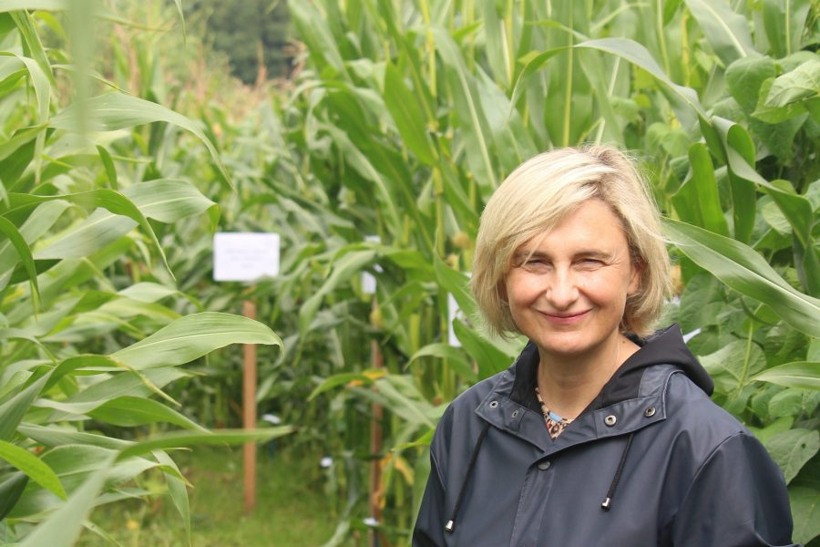 Minister Crevits in the field