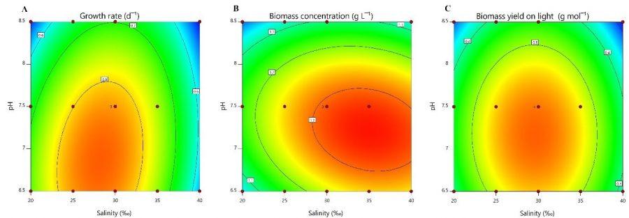 grafieken die het zoutgehalte, groeisnelheid en biomassaconcentratie tonen