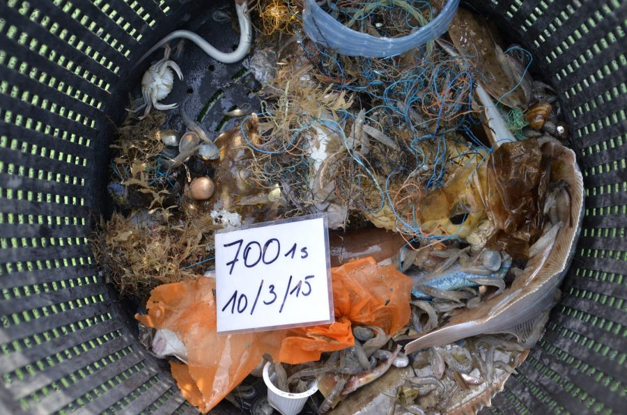 "Basket of fish with lots of trash ""more trash than fish"""