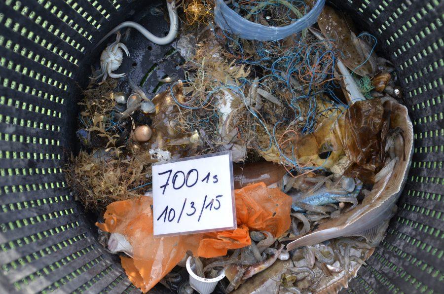 Marine litter on the seafloor