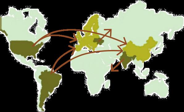 Kaart wereldhandel soja