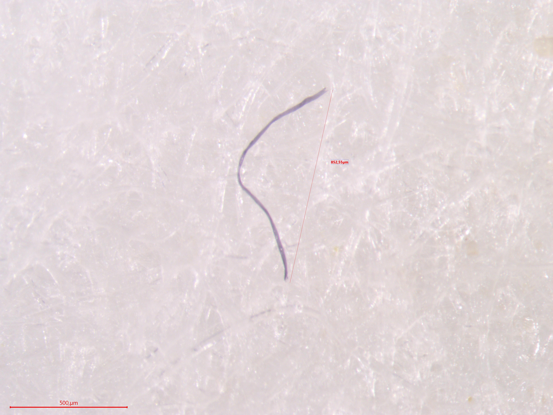 microplastic vezel op filter